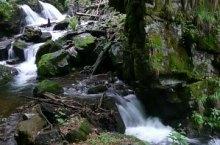 Cascada Bohodei, Stana de Vale , Foto: Cselényi László