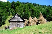 Bihor-Vladeasa, Muntii Apuseni - Casa de Piatra, Foto: Camelia Cioacă