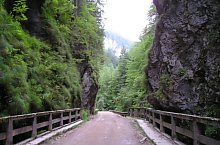Ordancusa vale, Photo: Tiberiu Sălciuan