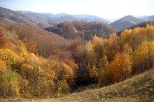 Plaiul Ferice, Bihor-Vladeasa, Muntii Apuseni, Foto: Szűcs Irén