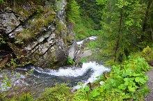 Cascada Rachitele, Valul Miresei, Rachitele , Foto: Csupor Jenő