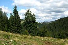 A lesi völgyzáró gát felé, Fotó: Vasile Coancă