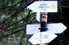 Spre cascada Moara Dracului, Foto: Vasile Coancă