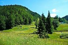 To Scărișoara cave, Photo: Andrei Pop