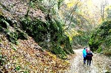 Traseul Stana de Vale-Meziad, Bihor-Vladeasa, Muntii Apuseni, Foto: Vasile Coancă