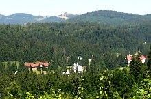 Biharfüred, Fotó: Mihai Păcuraru