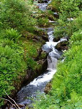 Vicinális vízesések, Fotó: Hám Péter