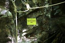 Dealul Secăturii barlang, Rézbánya , Fotó: Ioana Axinte