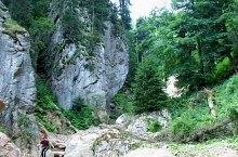 Száraz völgy kanyon, Păuleasa , Fotó: Kuti Ludovic
