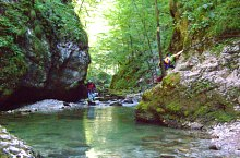 Galbena völgy, Păuleasa , Fotó: Radu Dârlea