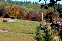 Valea Coblesului, Arieseni , Foto: Cselényi László