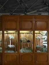 Ásványtani Múzeum, Nagybánya., Fotó: WR