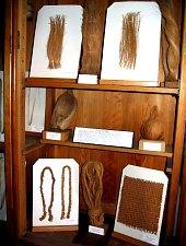 Növénytan múzeum, A kőkuszdióból nyert textil-szálak (Cocos nucifera), Fotó: Mihai Pușcaș