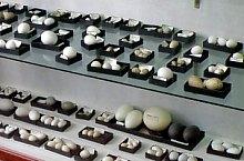 Cluj, Állattan múzeum, Fotó: Mezei Elemér