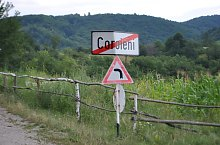 Coroieni , Foto: WR