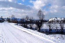Rogoz , Foto: Șerban Radu