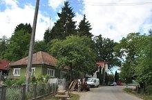 Szamosardó , Fotó: WR