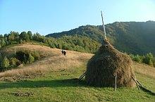Pietroasa , Foto: Vasile Coancă