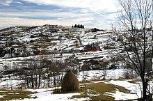 Rogozsel , Fotó: Hopulele Iulian