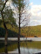 Lacul Zetea, Foto: Adorjáni Attila