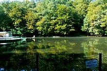 Mogyorósi tó, Szováta , Fotó: Alina Ghibu