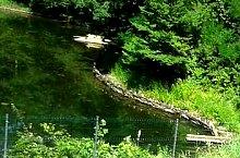 Lacul Negru, Sovata , Foto: Sóvidéki Televízió