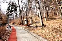 Traseul Sarii, Sovata , Foto: Biró László