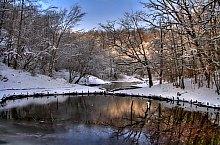 Lacul Verde si Lacul Rosu, Sovata , Foto: Dénes László