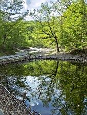Lacul Verde si Lacul Rosu, Sovata , Foto: Bogdan Apostoaia