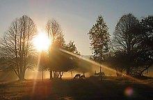 Ivói vadaspark, DN13a Balavásár-Csíkszereda., Fotó: Ivoi vadaspark