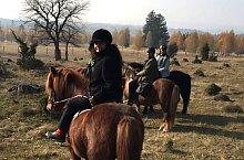 Icelandic Horse Riding Ranch, DN13a Bălăușeri-Miercurea Ciuc·, Photo: Septimiu Bizo