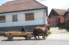 Satu Mare , Foto: Turisztikai Információs Iroda