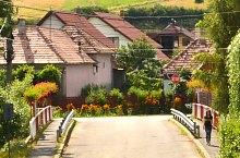 Târnovița , Photo: WR
