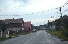 Vădaș , Photo: WR