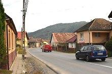 Viforoasa , Foto: WR
