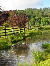 Pastravaria, Campu Cetatii , Foto: WR
