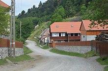 Pauleni , Foto: WR