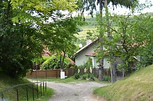 Tamasu , Foto: WR