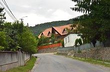 Tibod , Foto: WR
