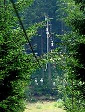 Harghita Bai , Foto: Balu Adventure Park