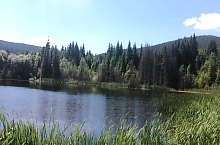 Kicsi tó, Hargitafürdő , Fotó: Gecző Lajos
