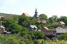 Paltinis , Foto: Ősz Tamás Zsolt