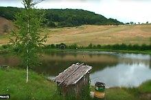 Fishing lakes, Polonița , Photo: Lengyelfalvi Halastavak