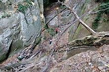 Sálfalvai kanyon, Sálfalva , Fotó: Liviu Odagiu