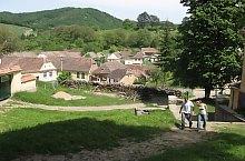 Almakerék , Fotó: Ferenczi Zoltán Sámuel