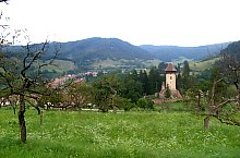 Almakerék , Fotó: Nicu Perlea