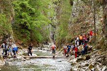 Râmeț gorge, Valea Mănăstirii , Photo: WR