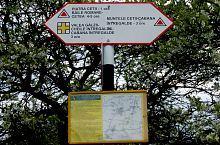 Narcissus Road, Valea Mănăstirii , Photo: WR