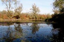 Lacul Unu, Campulung la Tisa , Foto: Várkola Tibor