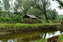 Mircea tava, Kisremete , Fotó: WR